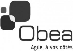 Logo de Obea
